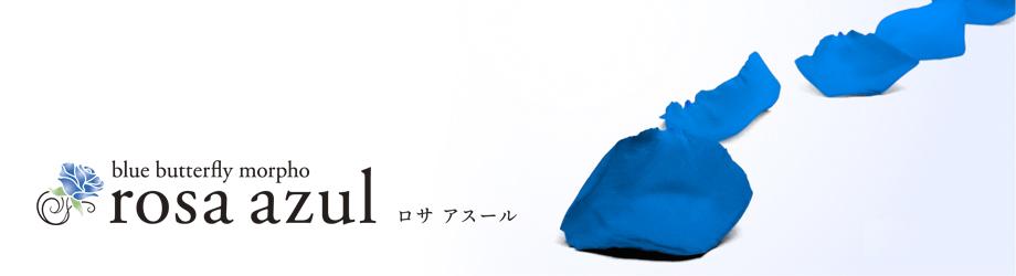 新潟県南魚沼市浦佐の美容室 rosa azul - ロサアスールのホームページです。